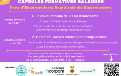 La nova reforma de la Llei d'Autònoms i gestió de xarxes socials per a emprenedors, càpsules formatives del CEI Balaguer