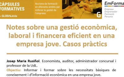"""Càpsula al CEEILleida: """"Gestió econòmica, laboral i financera eficient en una empresa jove. Casos pràctics"""""""