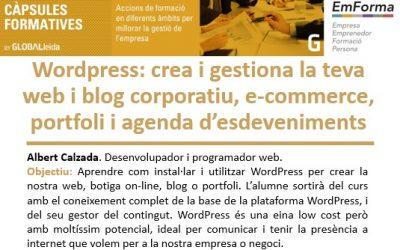 Vols aprendre a utilitzar WordPress? Vine a la càpsula que ofereix el Ceeilleida el 7 de setembre