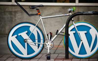 Crea i gestiona la teva web amb WordPress i Woocommerce, la càpsula formativa que oferirà el CEEILleida el 24 i el 26 de setembre